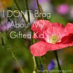 I don't brag about my gifted kid