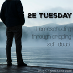 2e Tuesday - Homeschooling through crippling self-doubt